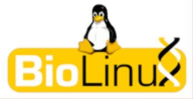 Linux 通用块层 bio 详解